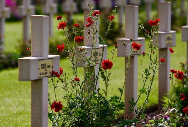 SOF Ypres Memorial Service